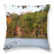 3008-fall Waterscape Throw Pillow