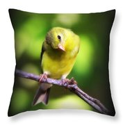 3008 - Goldfinch Throw Pillow