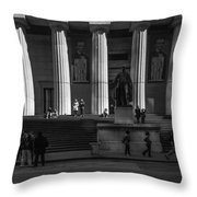 330 Throw Pillow