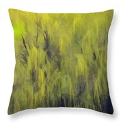 331 Throw Pillow