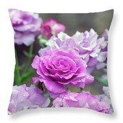 3396 Throw Pillow