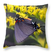 3398 - Butterfly Throw Pillow