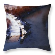 33rd And Canal Throw Pillow