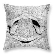 Bw Sketches Throw Pillow