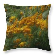 341 Throw Pillow