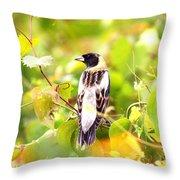 3457 - Bobolink Throw Pillow