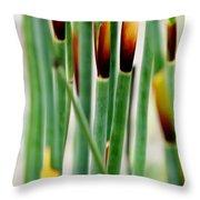 Bamboo Grass Throw Pillow