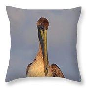 35- Brown Pelican Throw Pillow