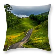 Landscape Pictures Throw Pillow