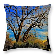 365 012716 Ancient Valley Oak And Parking Throw Pillow