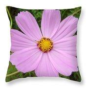 Australia - Mauve Flowers Throw Pillow
