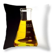 Laboratory Equipment In Science Research Lab Throw Pillow