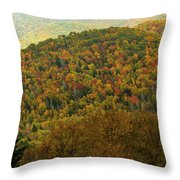 North Carolina Fall Colors Throw Pillow