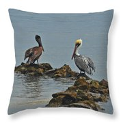37-  Pelicans Throw Pillow