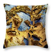 377 At 41 Series 2 Throw Pillow