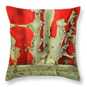 377 At 41 Series 3 Throw Pillow