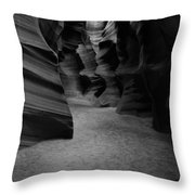 382 Throw Pillow