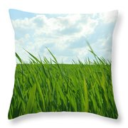 38744 Nature Grass Throw Pillow