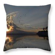 3880 Throw Pillow