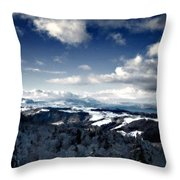 C L Landscape Throw Pillow