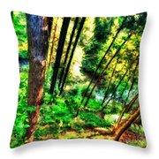 Landscape Image Throw Pillow
