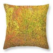 3991 Autumn Profusion Throw Pillow