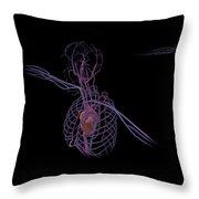 3d Rendering Of Human Circulatory Throw Pillow
