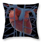 3d Rendering Of Human Heart Throw Pillow
