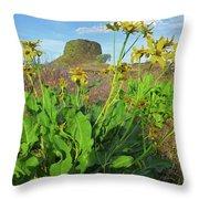 3da5792-dc Arrowleaf Balsamroot Framing Hat Rock Throw Pillow
