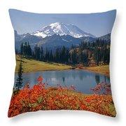 3m4824 Tipsoo Lake And Mt. Rainier H Throw Pillow