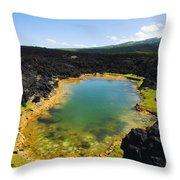 Ahihi Kinau Natural Reserve Throw Pillow