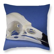 American Crow Skull Throw Pillow