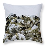 4 And 20 Blackbirds Throw Pillow