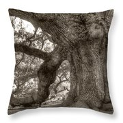 Angel Oak Live Oak Tree Throw Pillow