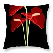 Anthurium Flowers, X-ray Throw Pillow