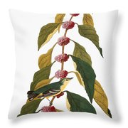 Audubon: Warbler Throw Pillow