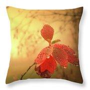 Autumn Fog Throw Pillow