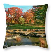 Autumn In Forest Park St Louis Missouri Throw Pillow