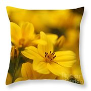 Bidens Named Peter's Gold Carpet Throw Pillow