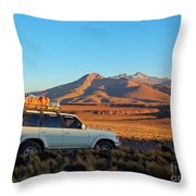 Bolivia Throw Pillow