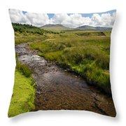 Brecon Beacons National Park 1 Throw Pillow