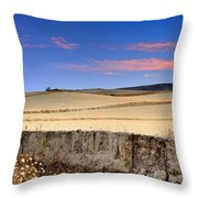 Cereal Fields Throw Pillow