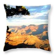 D C Landscape Throw Pillow