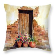 Door With Pots Throw Pillow