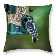 Downy Woodpecker In The Wild Throw Pillow