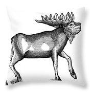 Elk/moose Throw Pillow