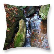 4 Faces In The Water Throw Pillow