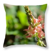 Flor Silvestre Throw Pillow