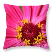 Fuchsia Pink Zinnia From The Whirlygig Mix Throw Pillow