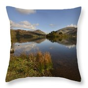 Grasmere Throw Pillow